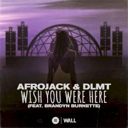 Afrojack & Shermanology - Wish You Were Here